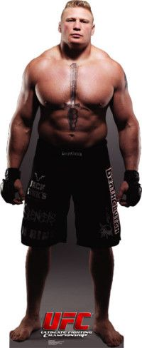 UFC - Brock Lesnar Stand Up from AllPosters.com - $34.99