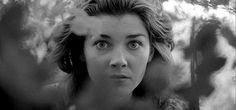 """""""Fear and desire"""": nelle sale il primo Kubrick"""