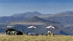 Plan your luxury South Africa safari with trusted travel experts. Red Savannah offers the most popular luxury lodges and hotels across South Africa. Best Boutique Hotels, Best Hotels, South Africa Holidays, South Africa Safari, Safari Holidays, Private Games, Last Minute Travel, Port Elizabeth, Game Reserve