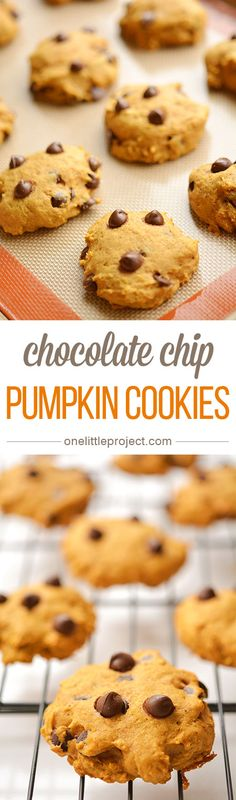 Pumpkin Chocolate Chip Cookies | Recipe | Pumpkin Chocolate Chip ...
