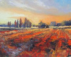 Field of Light Oil Painting  by Chris Hobel, prints and greeting Cards Available http://chris-hobel.artistwebsites.com/