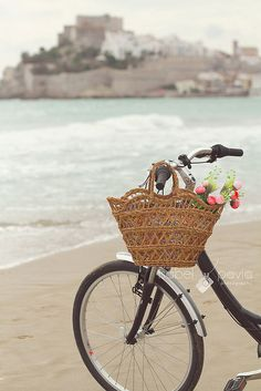 to live somewhere close enough to the beach that I could bike there on a daily basis: ultimate dream.