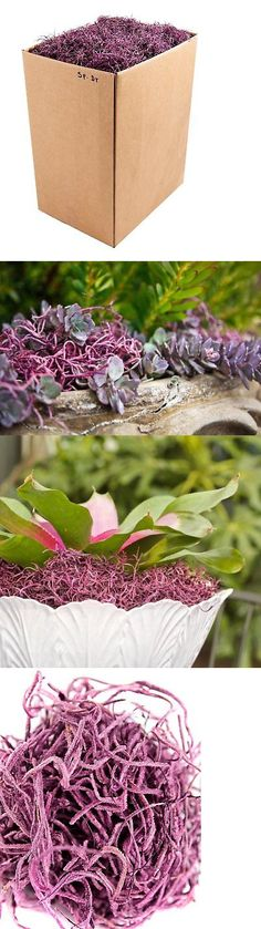 Swags and Garlands 28130: Supermoss 27025 Spanish Moss Preserved, Dusty Rose, 5Lbs -> BUY IT NOW ONLY: $47.3 on eBay!
