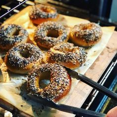 Bagels are Everything! Cheese Bagels, Asiago Cheese, Healthy Snaks, Plain Bagel, Cream Cheese Stuffed Jalapenos, Everything Bagel, Pastry Chef, Veggies, Bread