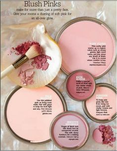 Blush pink paint home design chalk colors wall for interior Decoration Inspiration, Color Inspiration, Decor Ideas, Decorating Ideas, Tinta Sherwin Williams, Wall Colors, House Colors, Accent Colors, Pink Accent Walls