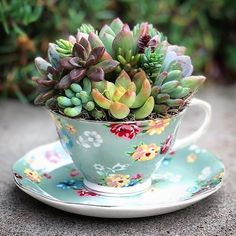 "378 Likes, 4 Comments - Earthly Space (@yourearthlyspace) on Instagram: ""Succulents and florals Check out our bio link for succulent and plant related goodies! by…"""