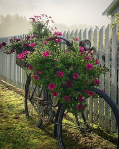 I Smile, Make Me Smile, Bicycle, How To Make, Flowers, Bike, Bicycle Kick, Bicycles