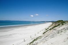 New adventure.family fun these holidays ! Sunny Beach, Beach Fun, Kiwiana, Camping Spots, New Zealand Travel, Salt And Water, New Adventures, Heaven On Earth, Travel Inspiration