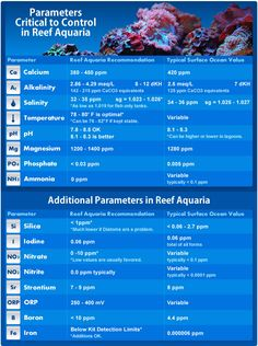 Maintaining proper reef tank parameters is essential to the health and well-being of fish, coral and invertebrate inside your aquarium. We created this chart so you will always know what the ideal conditions are for your wet pets. Use it while performing water tests so you will know how much supplement you need to dose your tank with.
