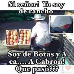 Ha a a a a cabrón! Funy Memes, Funny Jokes, Hilarious, Funny Spanish Memes, Spanish Humor, Funny Sexy, The Funny, Funny Images, Funny Pictures