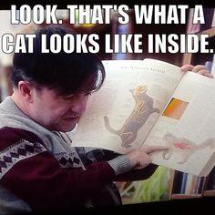 Derek (Ricky Gervais) on cats