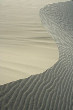 dune lines in Hat Head National Park, New South Wales, Australia By *omnia* on Flickr