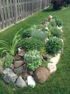 Rock bordered garden, herbs etc.