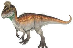 Weird Dinosaurs That Actually Existed