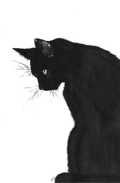 What would October be without some Black Cat art?- What would October be without some Black Cat art? What would October be without some Black Cat art? Cool Cats, I Love Cats, Crazy Cats, Black And White Sketches, Black Art, Cat Phone Wallpaper, Phone Wallpapers, Art Et Illustration, Cat Illustrations