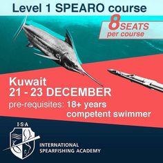 To all my Kuwaiti friends out there. @spearfishingacademy is running a course in Kuwait  well done to @cpt_badie for putting this together.  See below for details......  Join us in the first International Spearfishing Academy Course Held in Kuwait between 21 - 23 December 2017. First of its kind International Spearfishing Academy Course offers you both Spearfishing and Freediving training.  Pre-Requisites 18 & Competent Swimmer . For inquiries contact 97978000 . @spearfishingacademy…