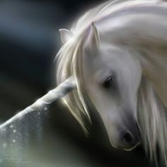 Sometimes they can take the guise of magical or mythical animals like Pegasus… Fantasy Unicorn, Unicorn And Fairies, Real Unicorn, Unicorns And Mermaids, Unicorn Art, Magical Unicorn, Beautiful Unicorn, White Unicorn, Unicorn Painting