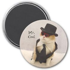 Mr. Cool Magnets In our offer link above you will seeShopping          Mr. Cool Magnets Online Secure Check out Quick and Easy...