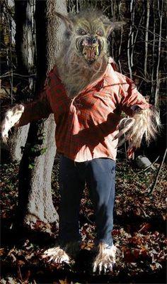 THE BIG BAD WOLF STUDIO WEREWOLF Halloween Costume
