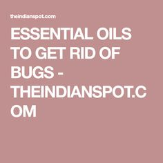 ESSENTIAL OILS TO GET RID OF BUGS - THEINDIANSPOT.COM