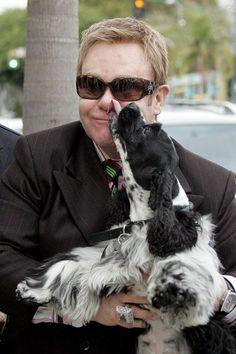 Elton John David Furnish Dog Arthur   10 stars folles de leur chien: Bo, le chien des Obama, joue le lapin ...
