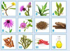 Clear pores herbal capsule ingredients