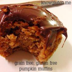 Grain Free Pumpkin Muffins with Coconut flour