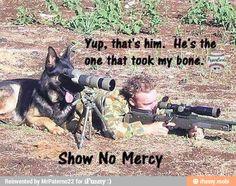 doggy killer