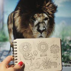 Grrrr..! :D  Day 75 of #The100DayProject  Lion. #100DaysOfDrawingThingsInDifferentVariations #notabook