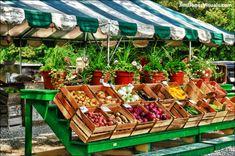 Pin tillagd av peggy keele på farmers market i 2019 vegetabl Produce Displays, Produce Stand, Vegetable Shop, Vegetable Stand, Vegetable Garden, Machine Sport, Farmers Market Display, Farmers Market Stands, Greenhouse Vegetables