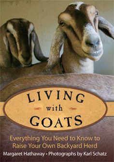 """Nigerian Dwarf Goats: """"Living-With-Goats"""", Ten Apple Farm"""