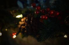 Close up of the berrys. It was a warming fire and lovely decorations last christmas
