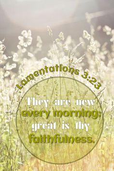 Lamentations 3:23 www.celebrateyourfaith.com