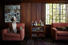 Our Favorite Pet-Friendly Home Designs >> http://blog.hgtv.com/design/2015/08/14/photo-furday-pet-approved-home-design/?soc=pinterest
