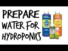 How to Prepare Water for Hydroponics - YouTube