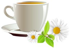 Cup of Coffee and Daisies PNG Clipart