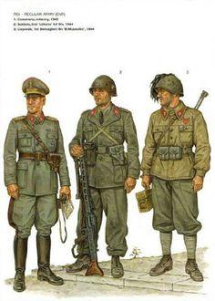 RSI esercito regolare