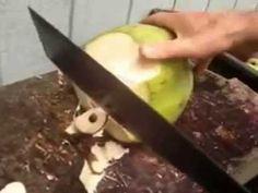 Cutting open a coconut in Trinidad & Tobago vs Hawaii
