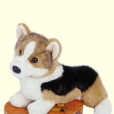 Stuffed Animals Details ** Stuffed Corgi ** White, Black and Tan Markings ** Made by Douglas Toys