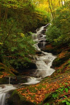 Roaring Fork Creek Falls - one of our favorite waterfalls in Pisgah National Forest near Asheville North Carolina.