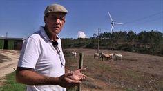 Tuulivoiman tuottamat infraäänet aiheuttavat sairastumisia lähellä asuville.