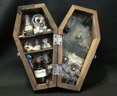 Mrs. Hamish's Strange Collection - Miniature Coffin Shadow Box