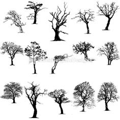clip art trees | Tree Silhouettes Vector Clip Art | StockGraphicDesigns