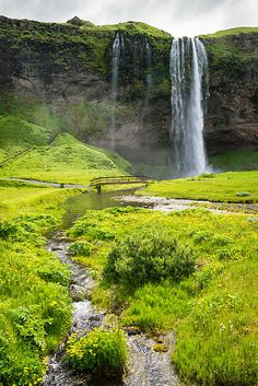 Iceland Seljalandsfoss waterfall in summer, beautiful landscape with a little river and fresh green grass. Click on the link or the image to buy a poster, fine art print or canvas print: http://matthias-hauser.artistwebsites.com/featured/iceland-seljalandsfoss-waterfall-matthias-hauser.html 30 days money back guarantee. (c) Matthias Hauser hauserfoto.com #nature