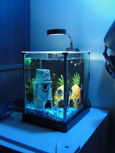 aquário Bob Esponja