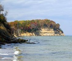 Calvert Cliffs State Park, MD. This peaceful beach on the Chesapeake Bay attracts avid fossil hunters and shell lovers from all over the East Coast.