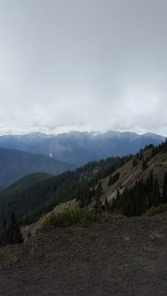 Hurricane Ridge — Washington Trails Association