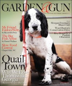 Garden & Gun Magazine. Another great one. Good articles and wonderful photography. I love the entire layout..font types, simple yet effective colors and graphics, etc. Good inspiration