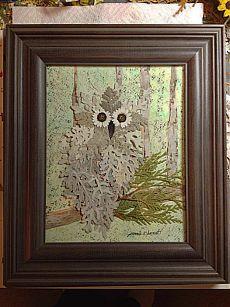 (3) Photos of The Owl Pages - Johan Willem Taljaard