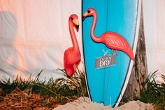 Beach Party Flamingo ........Photo - Hails and Shine